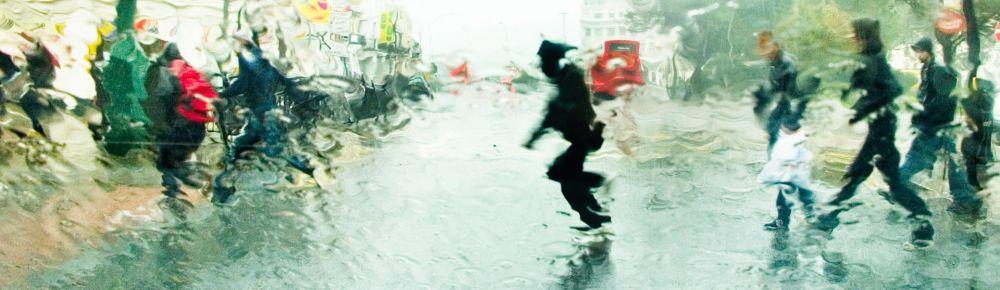 Rain dash